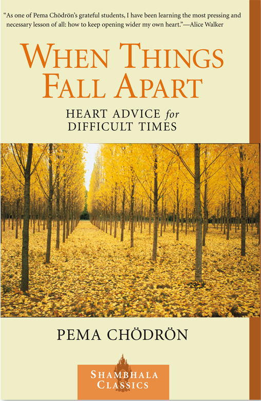 Books to read when traveling- When Things Fall apart Pema Chrodron